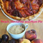 Peach, Nectarine and Plum Pie