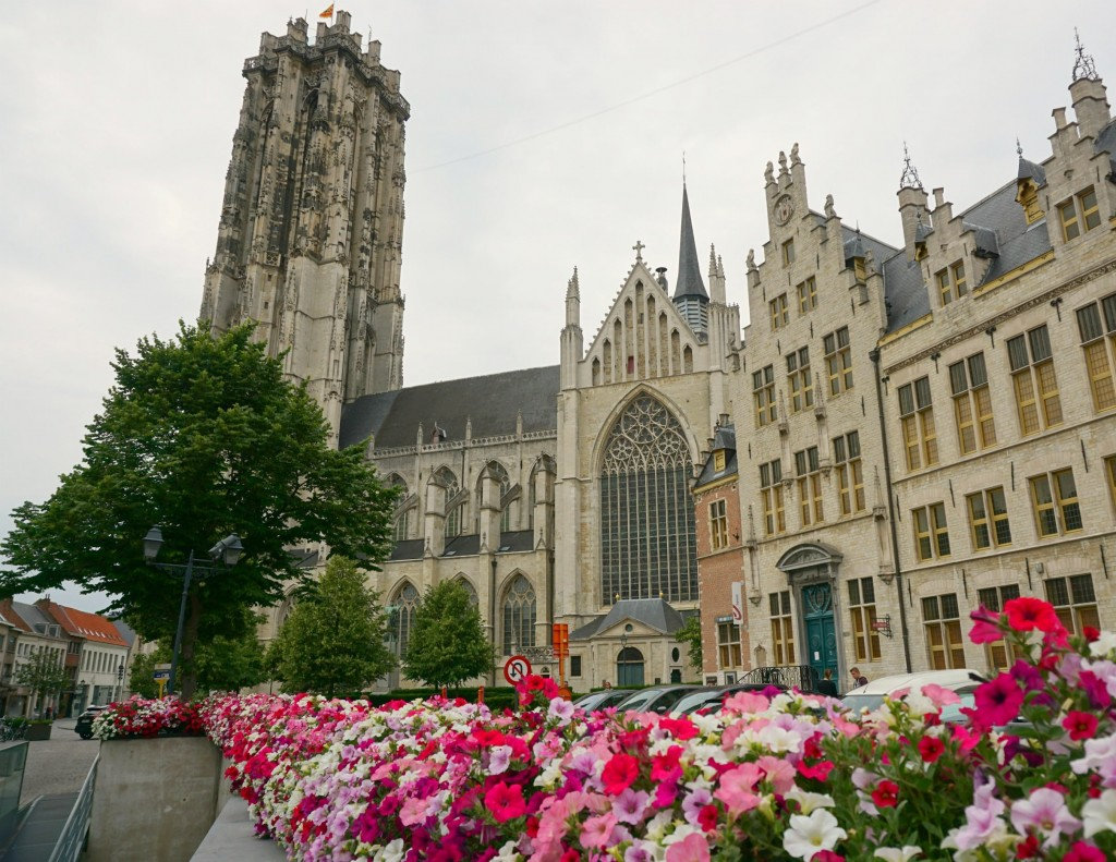 Mechelen St Rumbold Cathedral