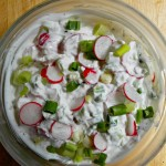 Yogurt Spread with Radishes and Green Onions