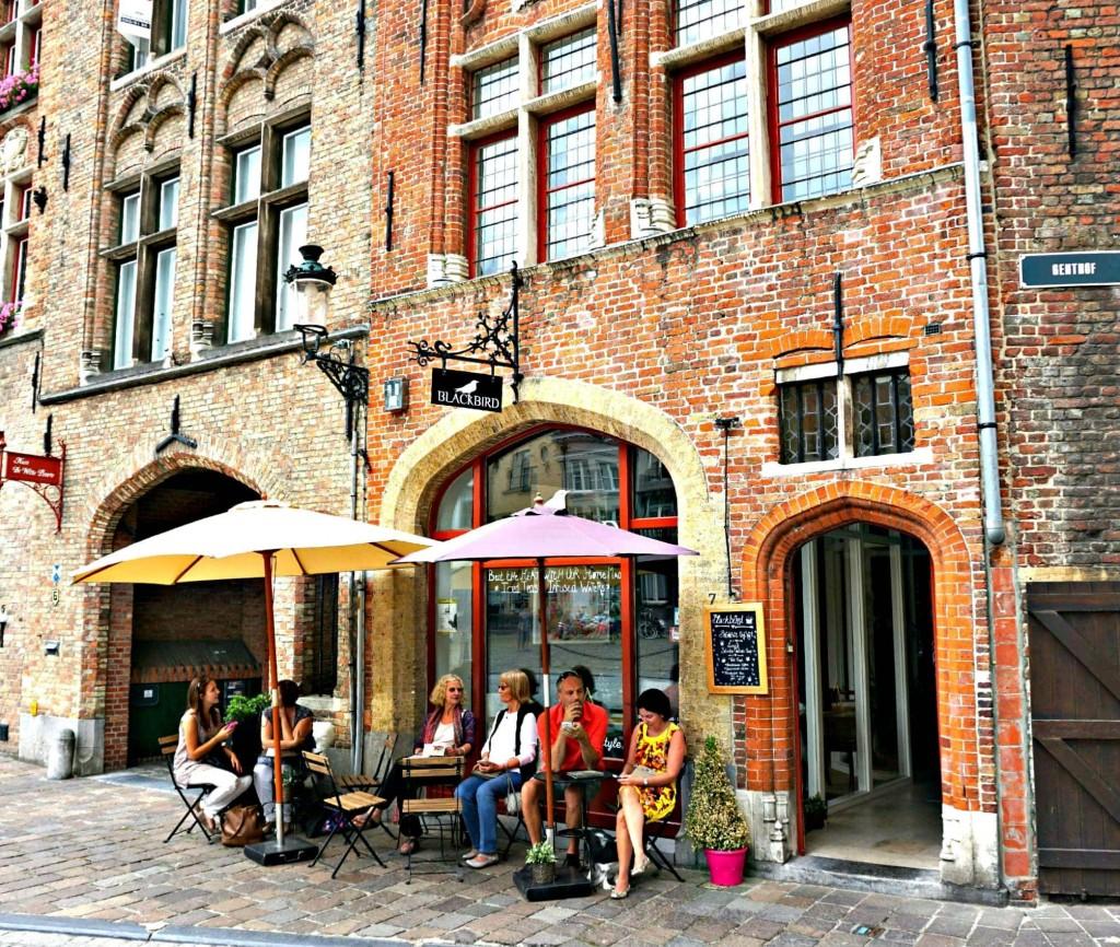 Bruges Blackbird outside