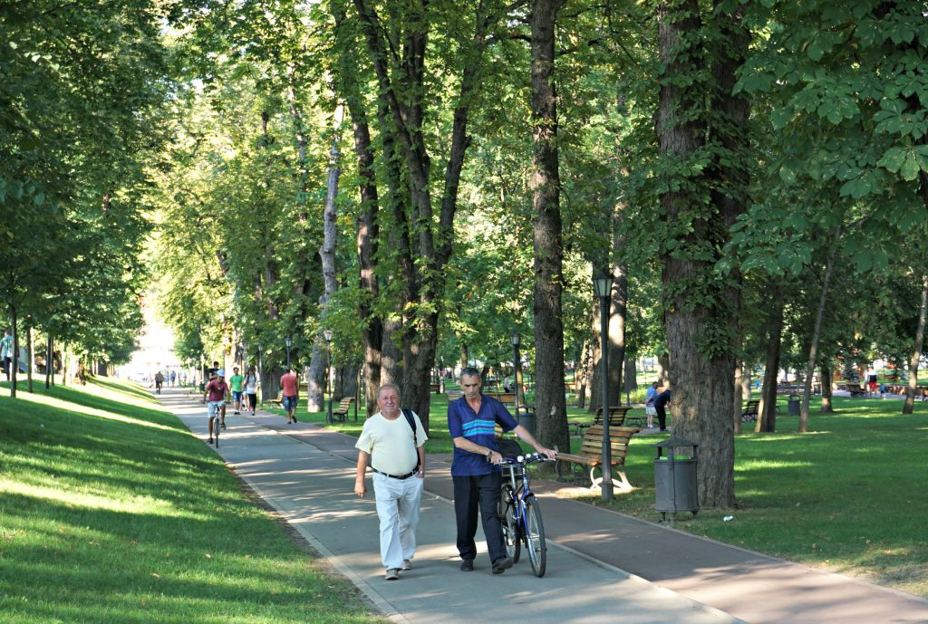 Bistrita Park