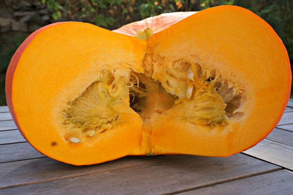 Cut Fresh Pumpkin